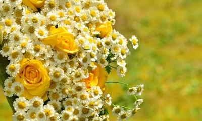 Ramo Flores Hungría, Comprar Flores Online, Floristerías en Salamanca, Flores para Regalar, Floristería Online, Floristas Profesionales, Envío de Flores